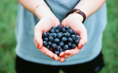 Vrai/Faux : les fruits
